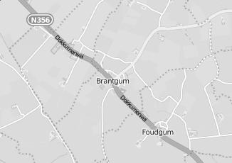 Kaartweergave van Action in Brantgum