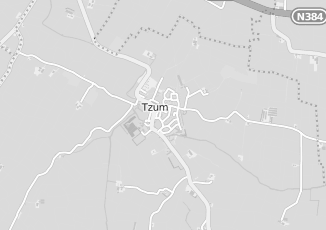 Kaartweergave van Tamminga in Tzum
